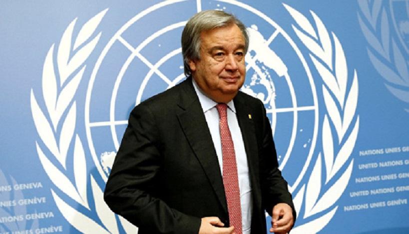 الأمم المتحدة تحتفي بالنساء وتسلط الضوء على جهودهن في الاقتصاد الأخضر