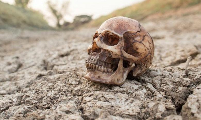 آسفي: استنفار أمني بعد العثور على جمجمة بشرية بجماعة مول البركي