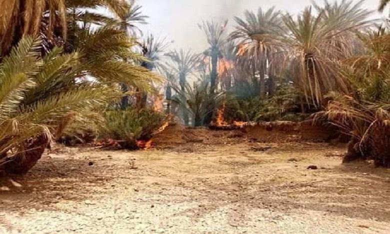 لجنة الإشراف على نافذة التشاور المدني بإقليم طاطا تذق ناقوس خطر انذلاع الحرائق بالواحات