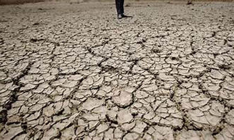 جمعية خريجي المدرسة الوطنية الغابوية للمهندسين تناقش إشكالية مكافحة التصحر والجفاف