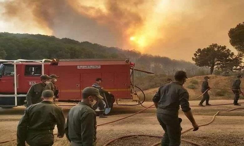 السيطرة على حريق غابة حوز الملاليين بالمضيق والنيران تلتهم 1024 هكتارا