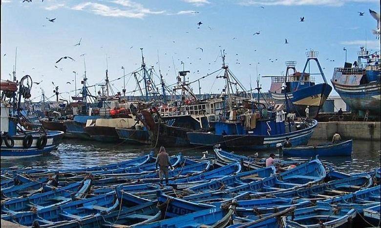 كوفيد 19: حملة تعقيم واسعة بميناء الصويرة بعد قرار إغلاقه