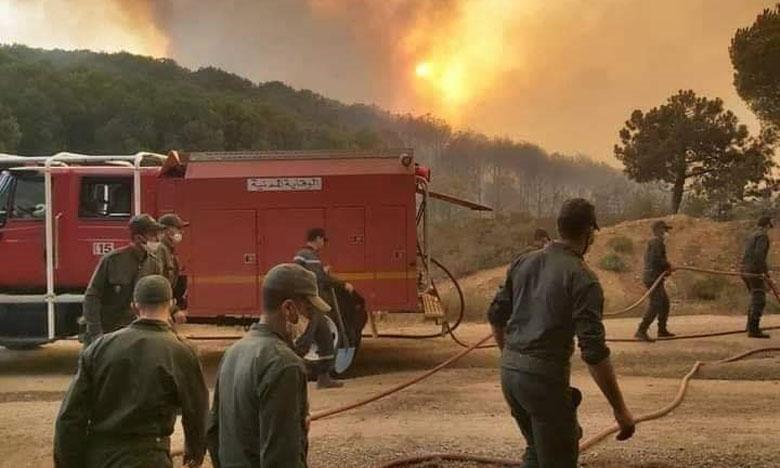 الأمطار تساهم في إخماد حريق غابوي كبير بإقليم وزان بعدما أتى على 4 هكتارات