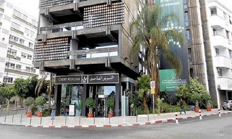 القرض الفلاحي للمغرب يؤكد دعمه التام للفيدراليات البيمهنية