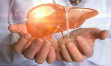 في اليوم العالمي لمحاربة التهاب الكبد الفيروسي ..وزارة الصحة تلتزم بتوفير الأدوية  بسعر مناسب
