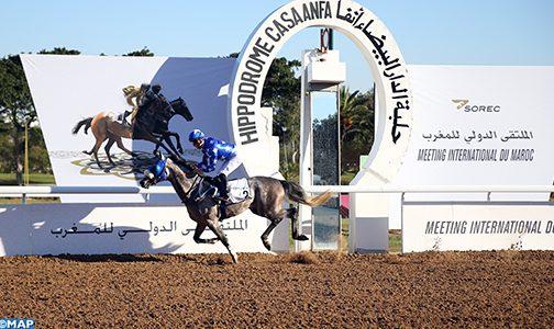 الفرس راجح  يتوج بالجائزة الكبرى للخيول العربية الأصيلة