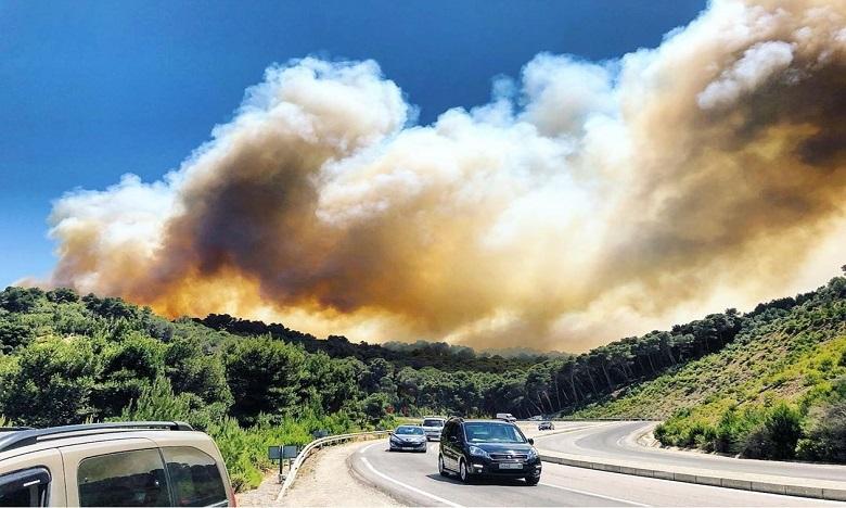 بعد تضرر ما يقارب 40 هكتارا من الغطاء الغابوي.. الجهود متواصلة لإخماد حريق غابة عين الحصن بتطوان