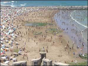sept plages non conformes cet été