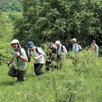 Un atelier sur le tourisme durable