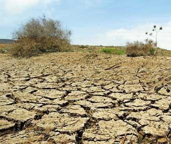 Des emplois pour atténuer les effets de la sécheresse