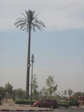 514 certificats négatifs délivrés à Marrakech