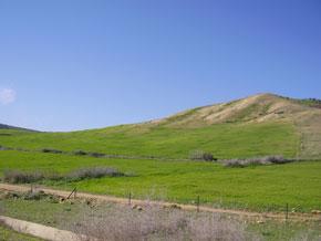 Mettre en valeur les potentiels du Gharb comme région irriguée s'étalant sur une superficie de 616.000 ha.