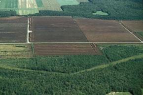 Toutes les conditions réunies pour réussir la saison agricole 2008-2009 à Al-Hoceïma.