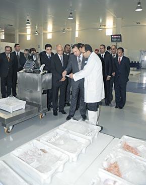 S.M. le Roi inaugure à Casablanca le marché de gros au poisson réalisé au montant de 70 MDH