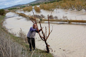 Les inondations paralysent l'agriculture
