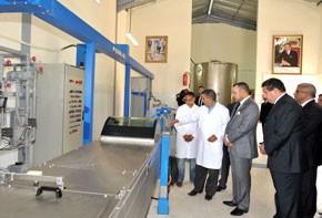 S.M. le Roi examine à Fquih Ben Salah les projets pour le développement de la filière oléicole dans la région de Tadla