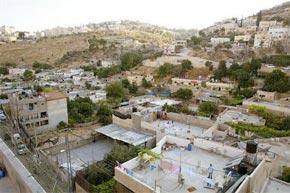 «La poursuite de la colonisation pourrait faire échouer les pourparlers directs». (Photo : www.protection-palestine.org)