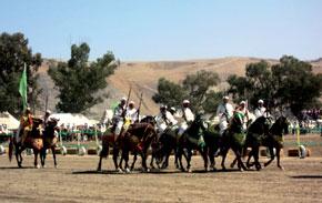 Franc succès pour le festival du cheval