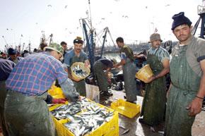 Les délégués régionaux du département de la pêche devaient travailler plus que les huit heures normales.