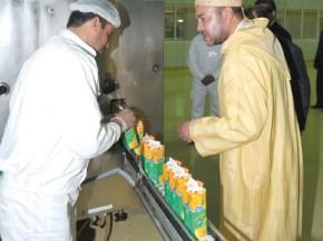 Les filières agrumicole et laitière dopées