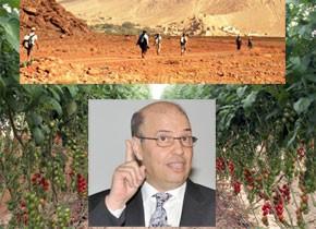 L'agriculture et le tourisme au Maroc en débat