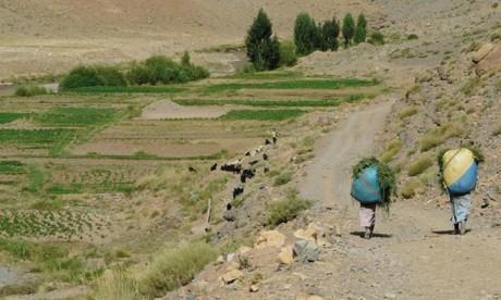 Importance capitale dévolue aux régions montagneuses