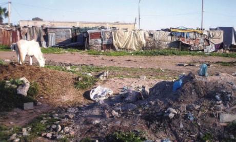 L'insalubrité du Souk de Benyakhlef empoisonne la vie des riverains