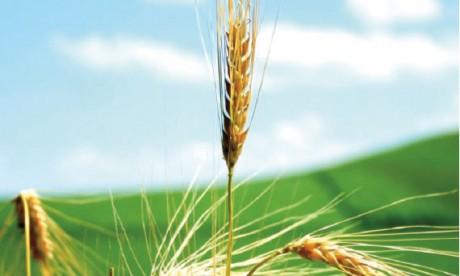 5,3% de croissance attendue au 4e trimestre2013