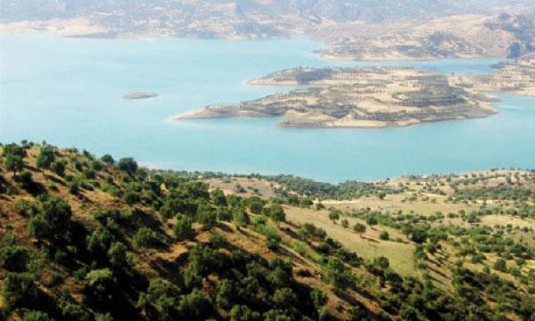 L'impact des margines sur la qualité des eaux se fait surtout sentir au barrage Sahla.