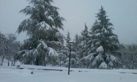 Ifrane célèbre sa 2ème fête des neiges