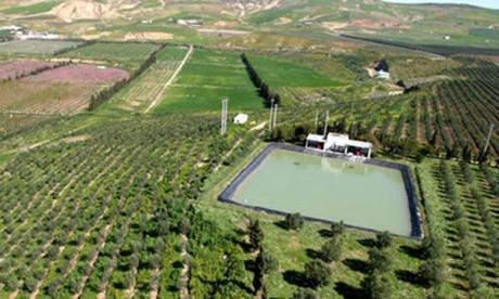 670 MDH pour soutenir le pilier 2 du Plan Maroc Vert
