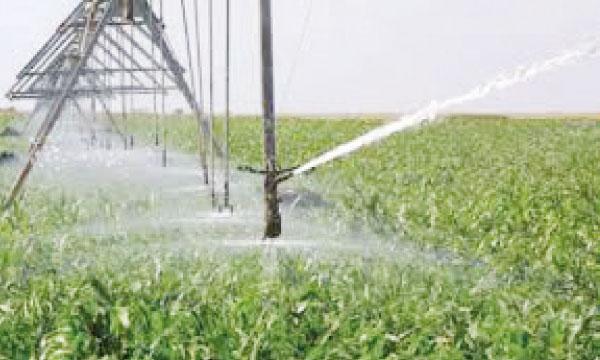 L'eau d'irrigation consomme plus de 80% des ressources hydriques mobilisées.