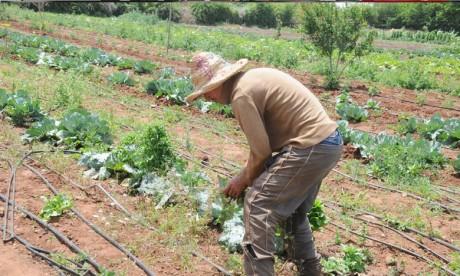 Vrai potentiel de développement au Maroc
