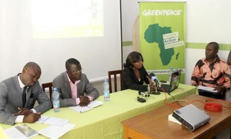 Greenpeace appelle au boycott mondial du bois illégal