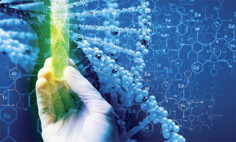 Une partie du patrimoine génétique mondial confiée au Maroc