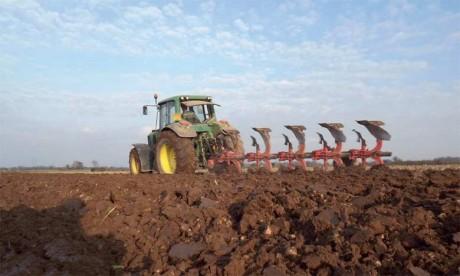 Les premières pluies de la saison pourraient assurer une campagne agricole moyenne