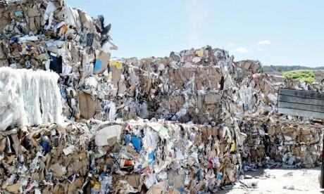 L'interdiction des sacs plastiques s'internationalise