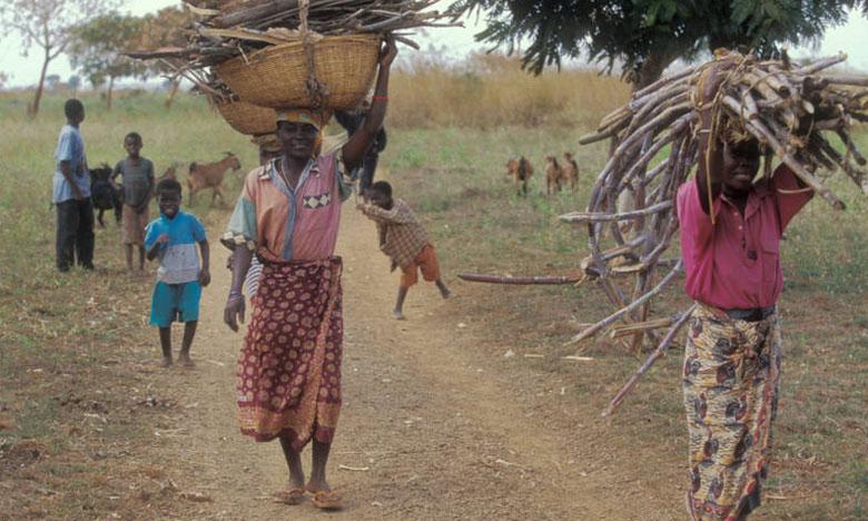 La FAO appelle les gouvernements à prendre des mesures pour libérer pleinement le potentiel des communautés locales pour la gestion durable des forêts.                   Ph. DR