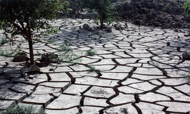 La stratégie de développement agricole, dit Plan Maroc vert, a également été critiquée.