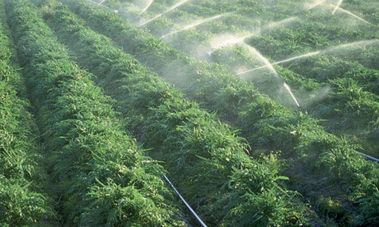 Le programme d'aménagement hydro-agricole permettra d'augmenter la production agricole de la région: 1.750 tonnes de lait, 600 tonnes de viandes rouges et 50.000 tonnes de maraichage.