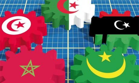Des actions plurielles vers la fédération des dynamiques et l'unicité de l'objectif