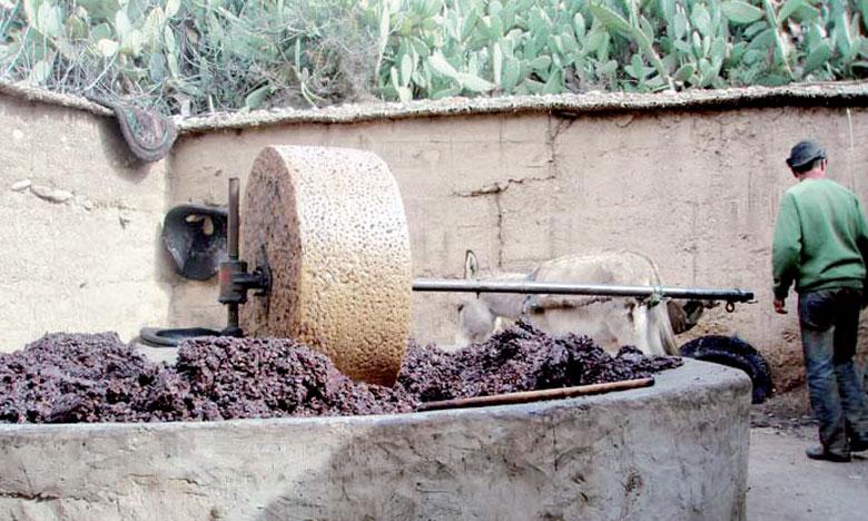Au Maroc, les huileries traditionnelles sont source de pollution. Le ministère de l'Environnement a consacré, entre 2014 et 2015, 86 millions de DH pour lutter contre deux sources de pollution: les margines et les fours traditionnels des poteries.