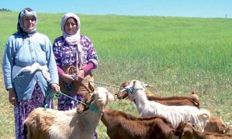 Les efforts du Maroc pour la réalisation des ODD exposés à Jakarta