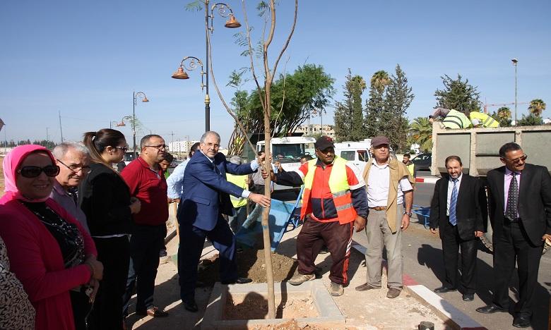 Lancée sous le signe «Planter des arbres pour le climat», cette opération environnementale a été conçue en vue d'améliorer le paysage urbain et les abords de la cité Idrisside. Ph. MAP