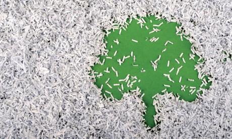 La dématérialisation, une réponse aux enjeux environnementaux
