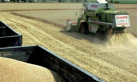 Outre la réduction des engrais et produits phytosanitaires, les bonnes pratiques conseillées passent par une foule d'autres actions, adaptables selon les latitudes.