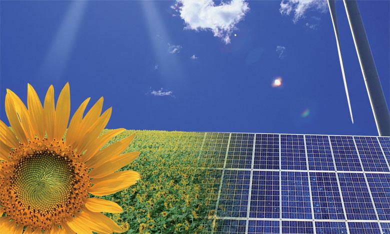 En 2015, les investissements se sont concentrés sur les énergies éolienne (110 milliards de dollars, soit une hausse de 80% par rapport à 2007) et solaire (161 milliards, +313% sur la même période).
