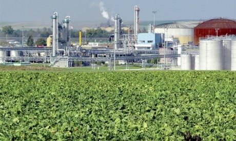 Selon Oxfam, le fait d'utiliser des terres arables à des fins énergétiques diminue les surfaces disponibles pour la production d'aliments.