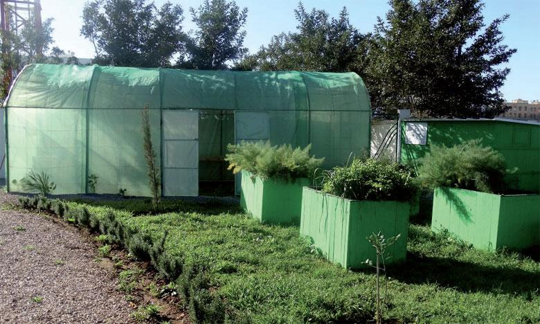 Exemple de la réutilisation des eaux usées épurées en agriculture, l'espace expérimental d'agriculture urbaine de Médiouna sera inauguré le 27 mars.