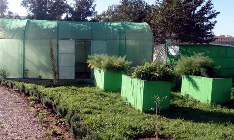 Le champ d'expérimentation de l'agriculture urbaine et biologique, mis en place sur un espace de 1.600 m2, a une vocation démonstrative de la réutilisation des eaux épurées en agriculture. Ph : DR